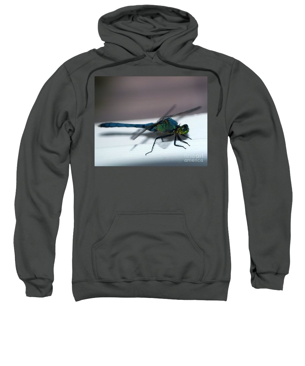 Clay Sweatshirt featuring the photograph Colorful Dragon by Clayton Bruster