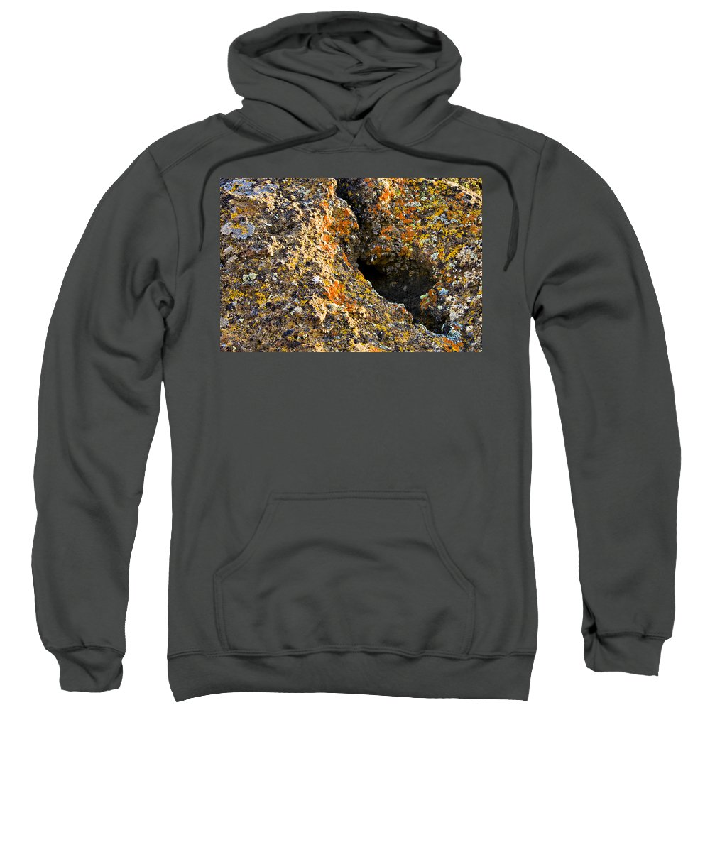 Lichen Sweatshirt featuring the photograph Colorful Lichens by Albert Seger