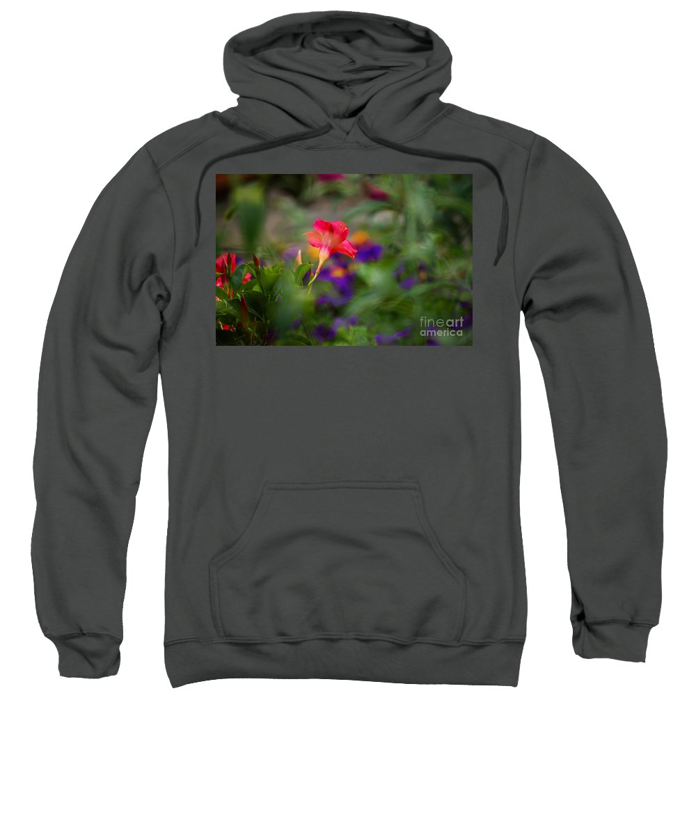 Flowers Sweatshirt featuring the photograph Colors Of Spring by Lori Tambakis