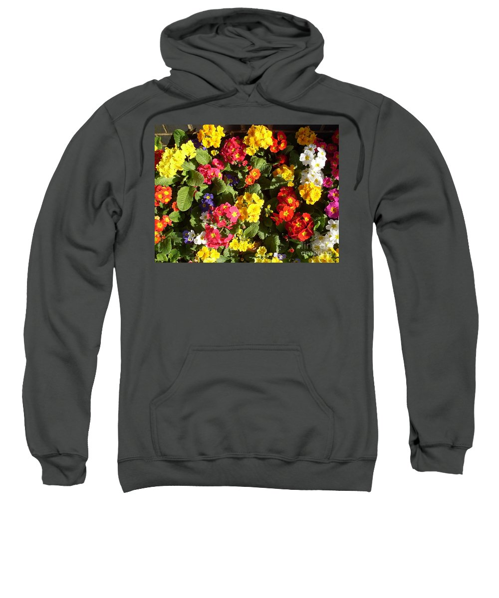 Flowers Sweatshirt featuring the photograph Colourful Spring Flowers by Elena Ivanova