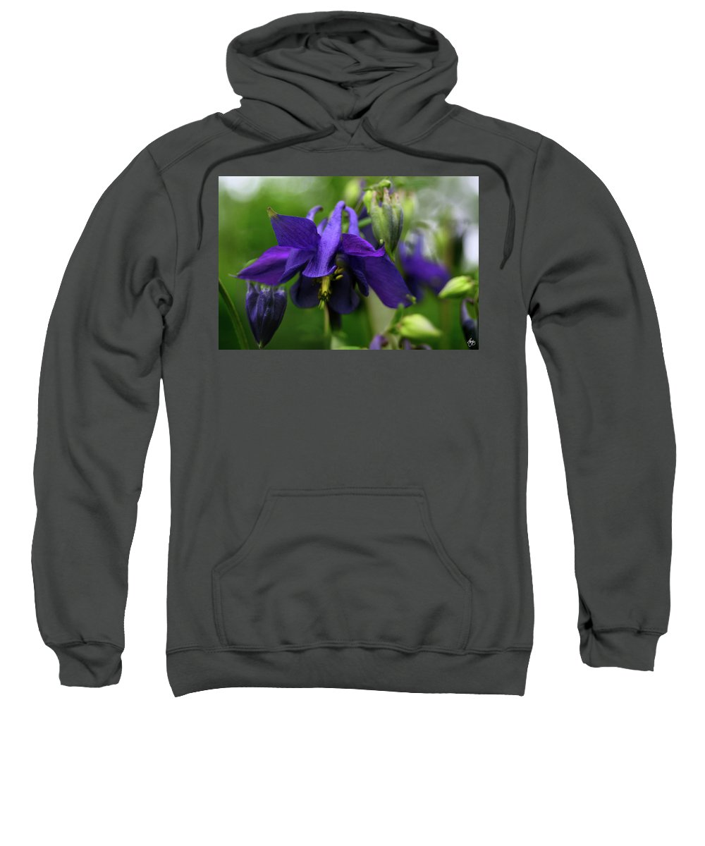 Columbine Sweatshirt featuring the photograph Columbine Montage by Wayne King