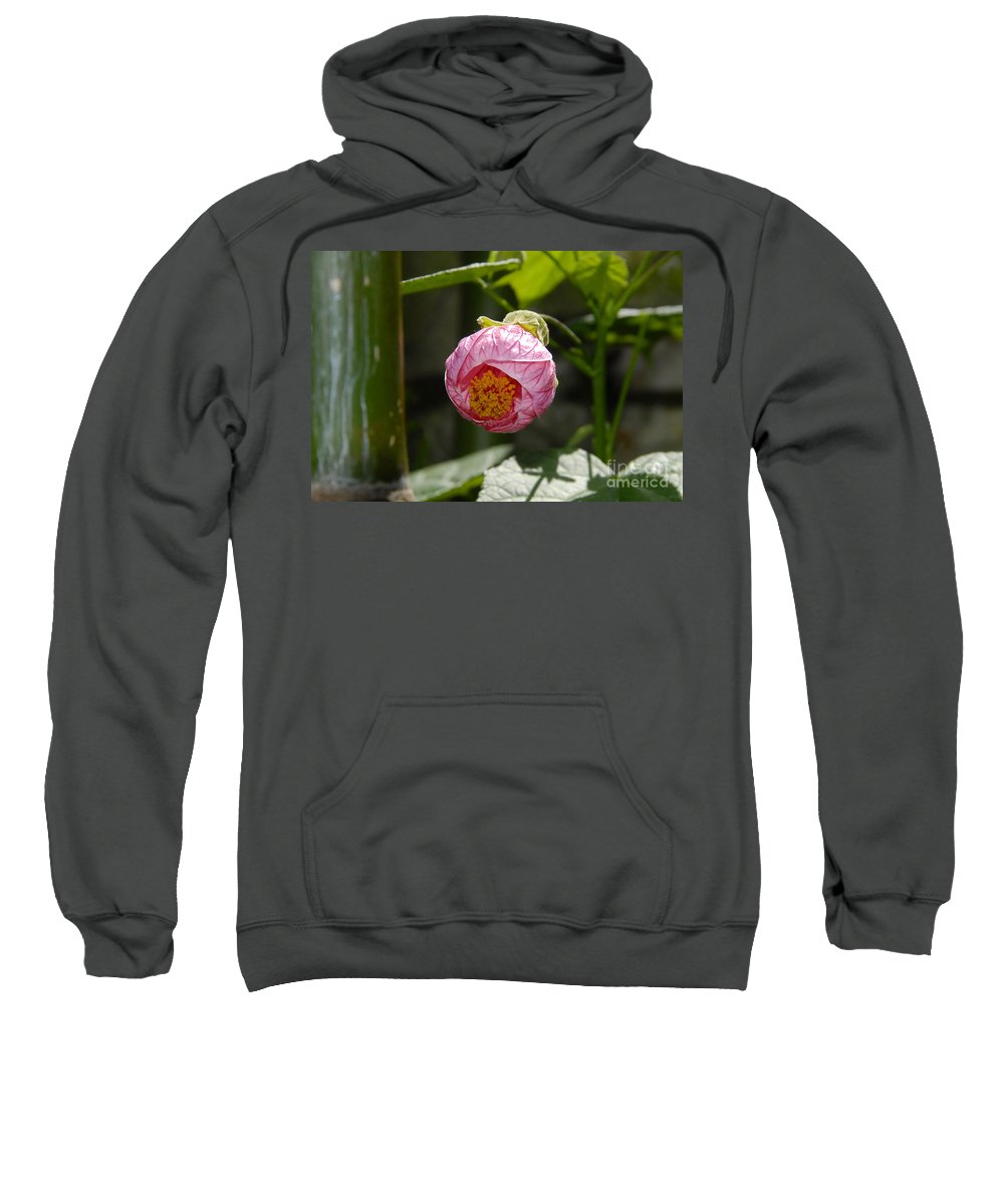 Flower Sweatshirt featuring the photograph Coming Out by David Lee Thompson
