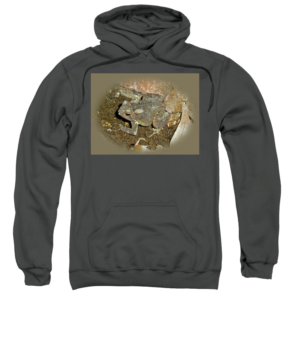 Toad Sweatshirt featuring the photograph Common Toad - Bufo Americanus by Mother Nature