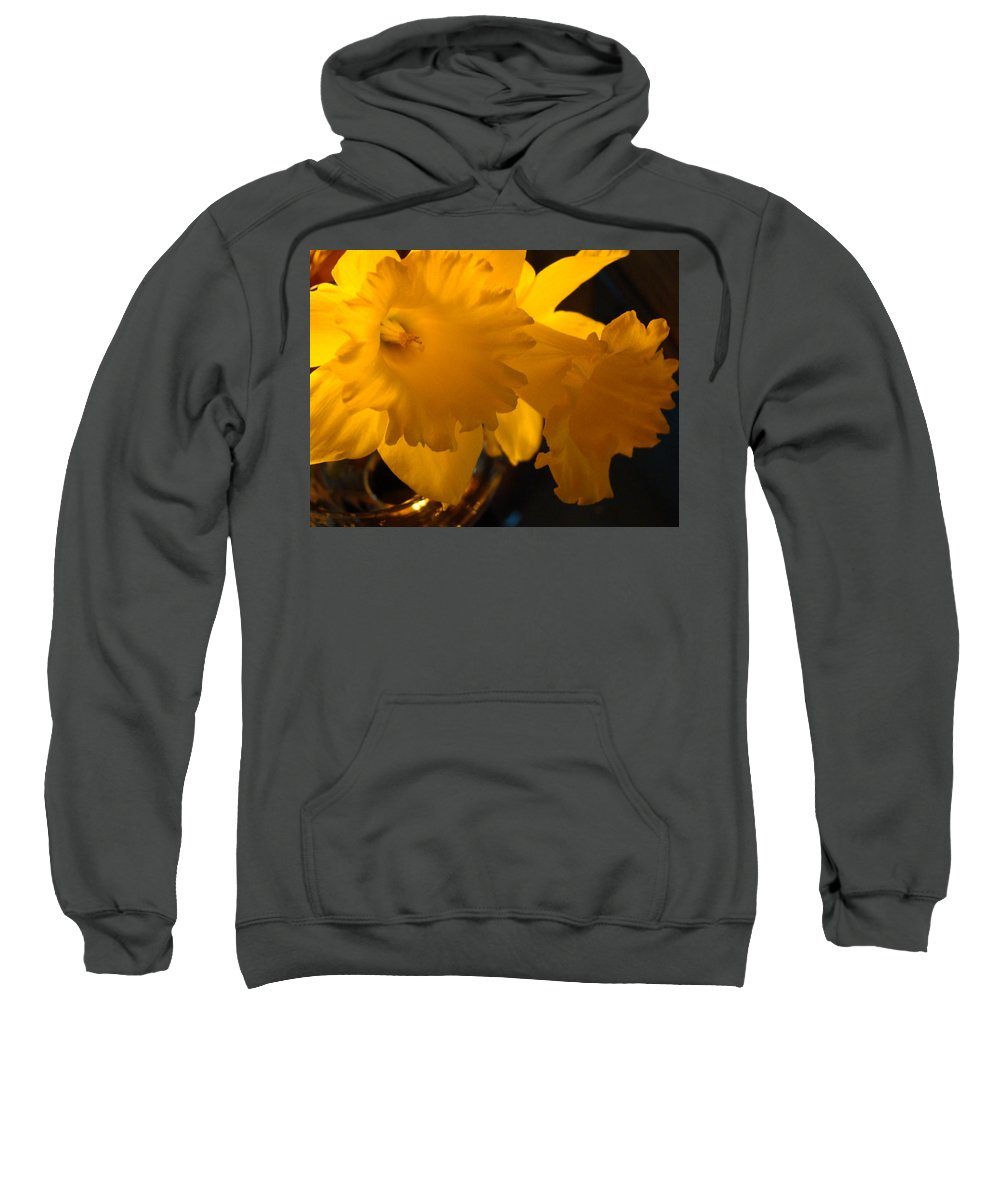 �daffodils Artwork� Sweatshirt featuring the photograph Contemporary Flower Artwork 10 Daffodil Flowers Evening Glow by Baslee Troutman