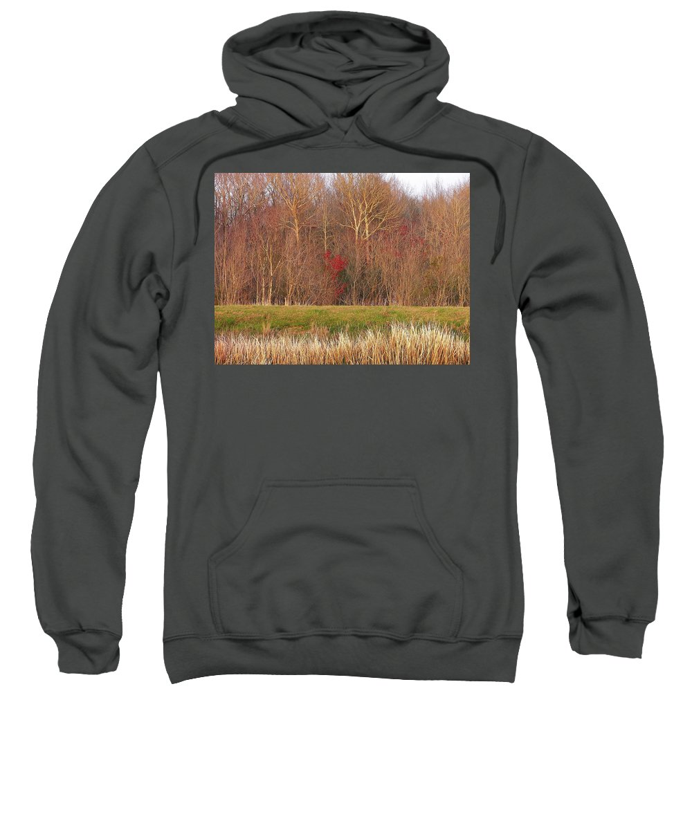 Trees Sweatshirt featuring the photograph Contrasting Colors by Al Powell Photography USA