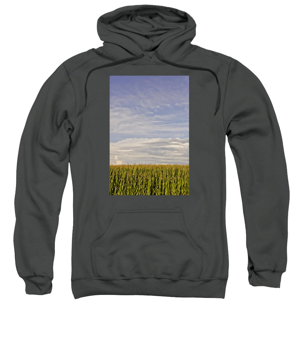 Corn Sweatshirt featuring the photograph Corn Field In Sunset II by Meg Porter
