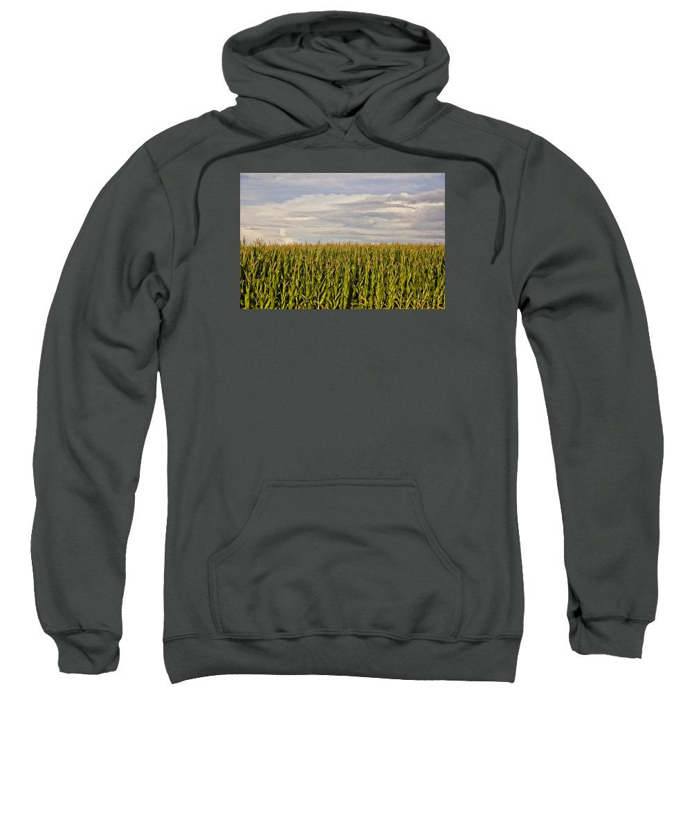 Corn Sweatshirt featuring the photograph Corn Field In Sunset by Meg Porter