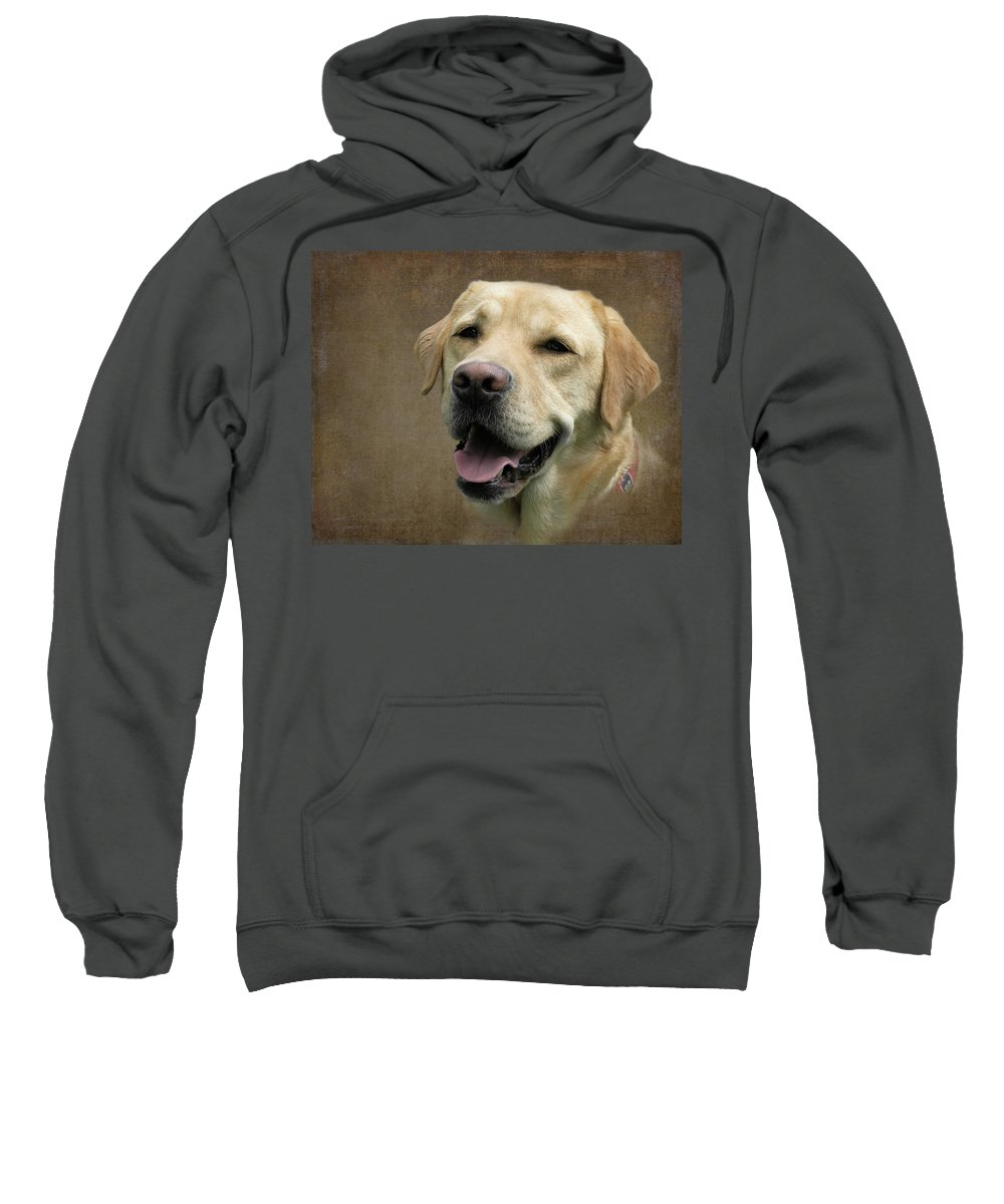Dog Art Sweatshirt featuring the photograph Cosmo by Diane Chandler
