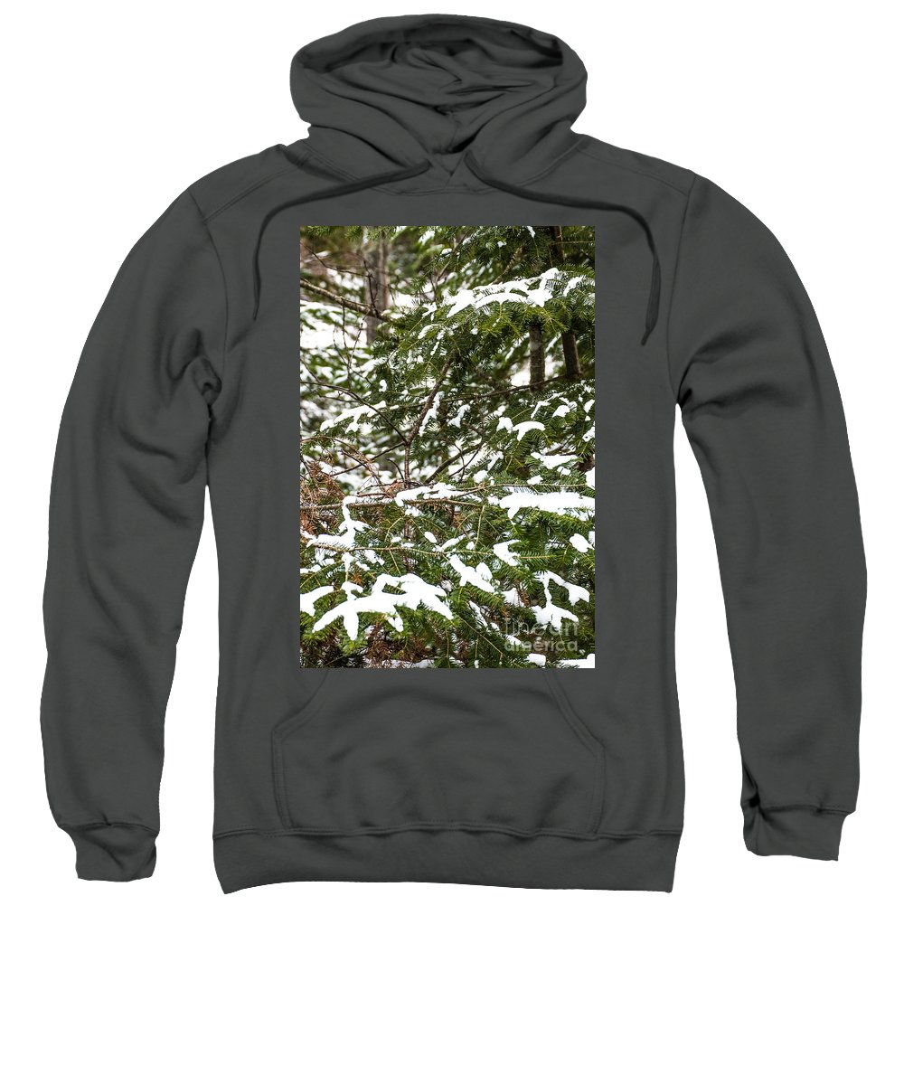 Snow Sweatshirt featuring the photograph Country Winter 8 by Wesley Farnsworth