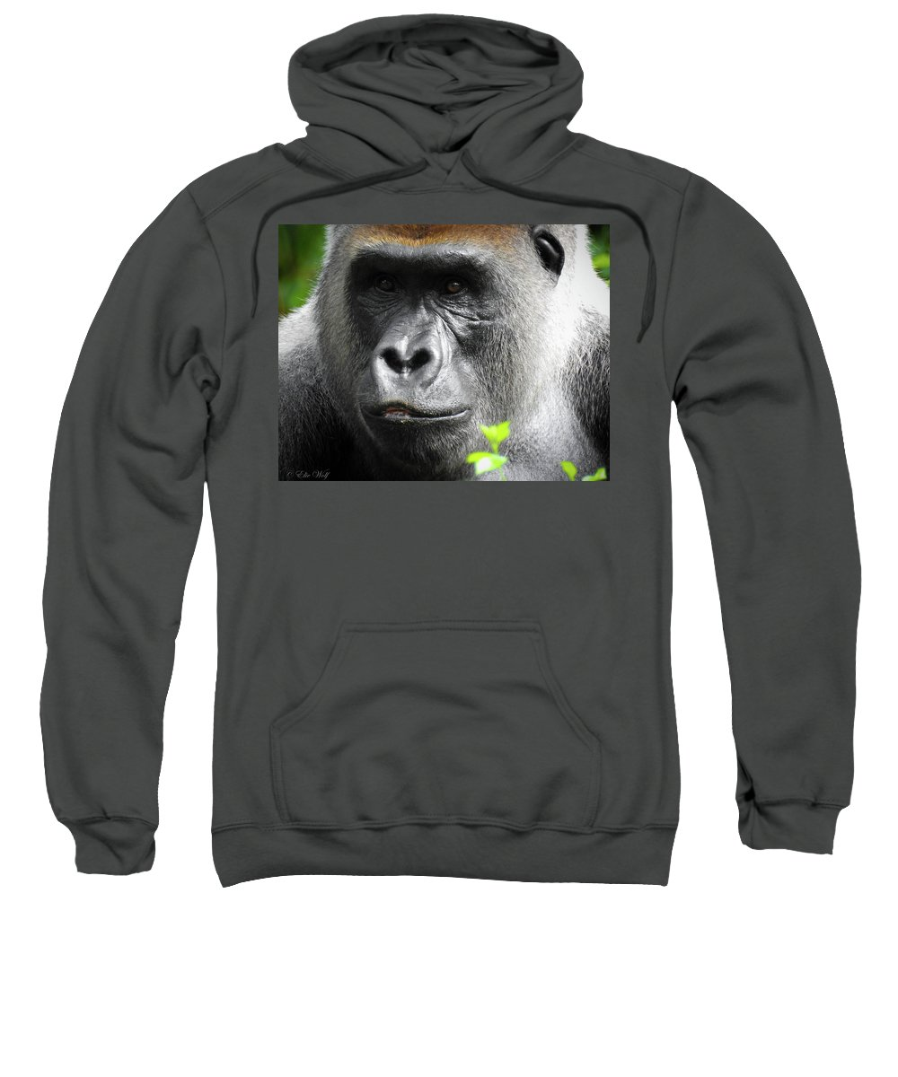 Gorilla Sweatshirt featuring the photograph Cousin Number 12 by Elie Wolf