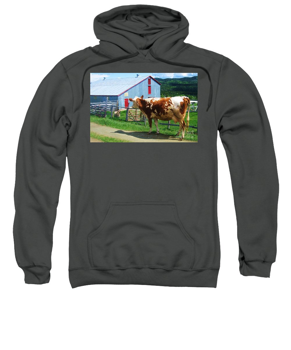 Photograph Cow Sheep Barn Field Newfoundland Sweatshirt featuring the photograph Cow Sheep And Bicycle by Seon-Jeong Kim