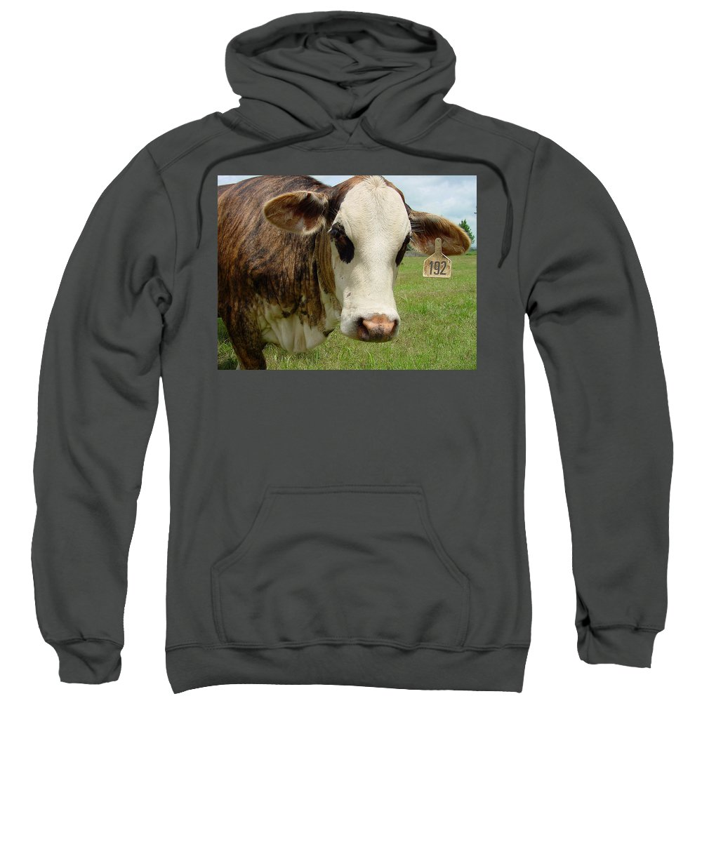 Cow Sweatshirt featuring the photograph Cows8937 by Gary Gingrich Galleries