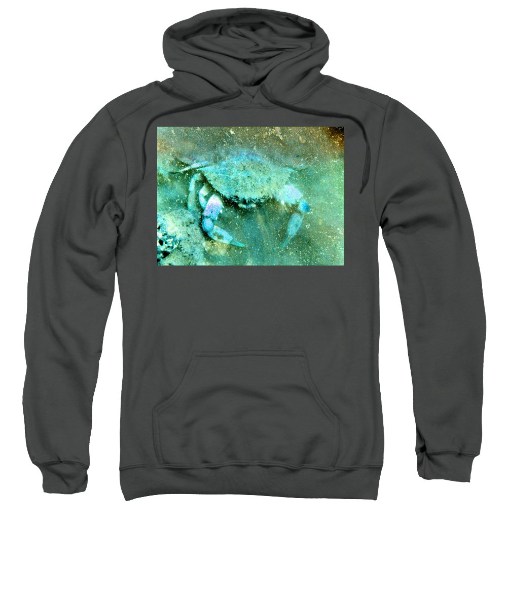 Marine Sweatshirt featuring the photograph Crab With The Blues by Wayne Potrafka