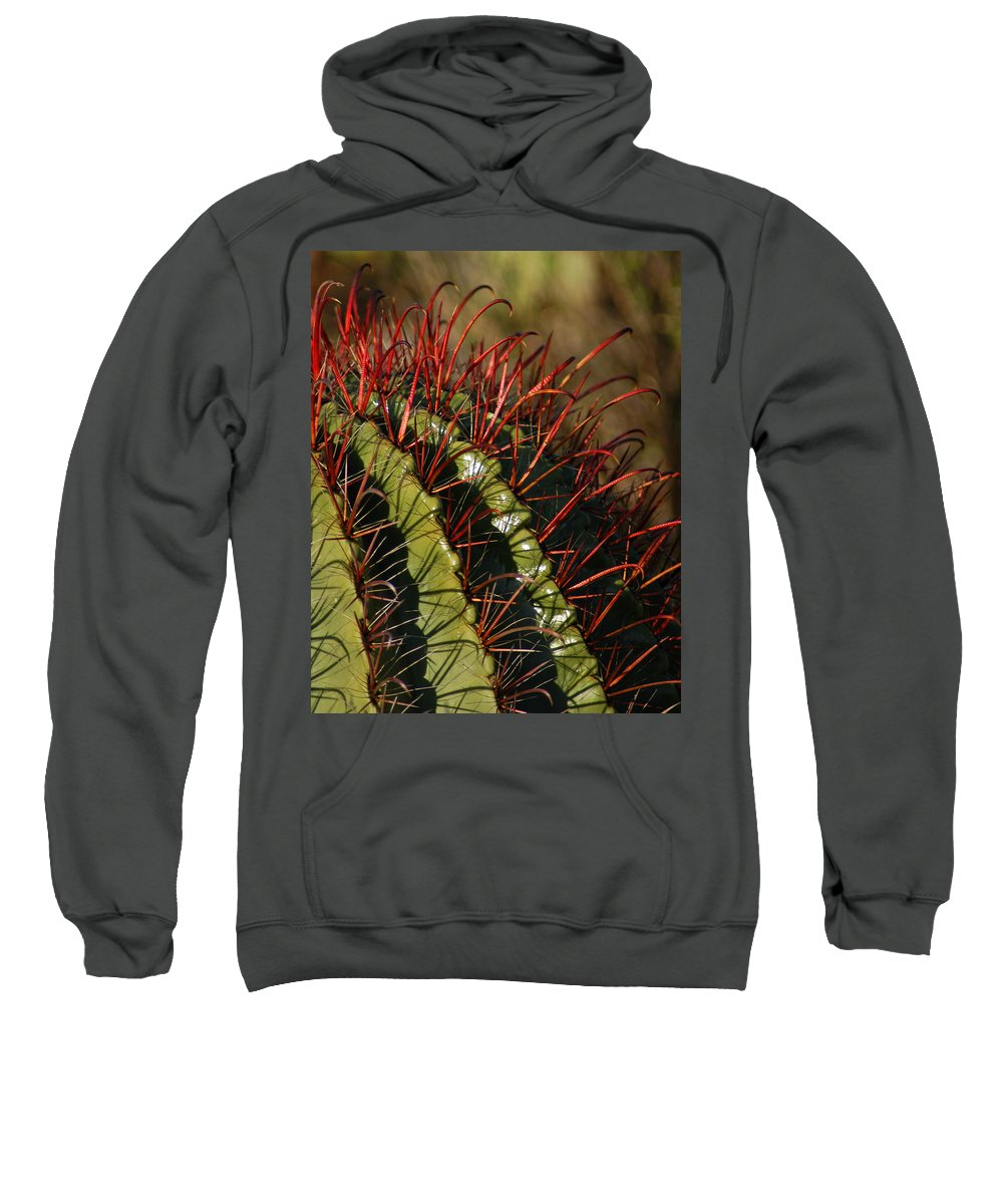 Red Sweatshirt featuring the photograph Crimson Thorns 2 by Teresa Stallings