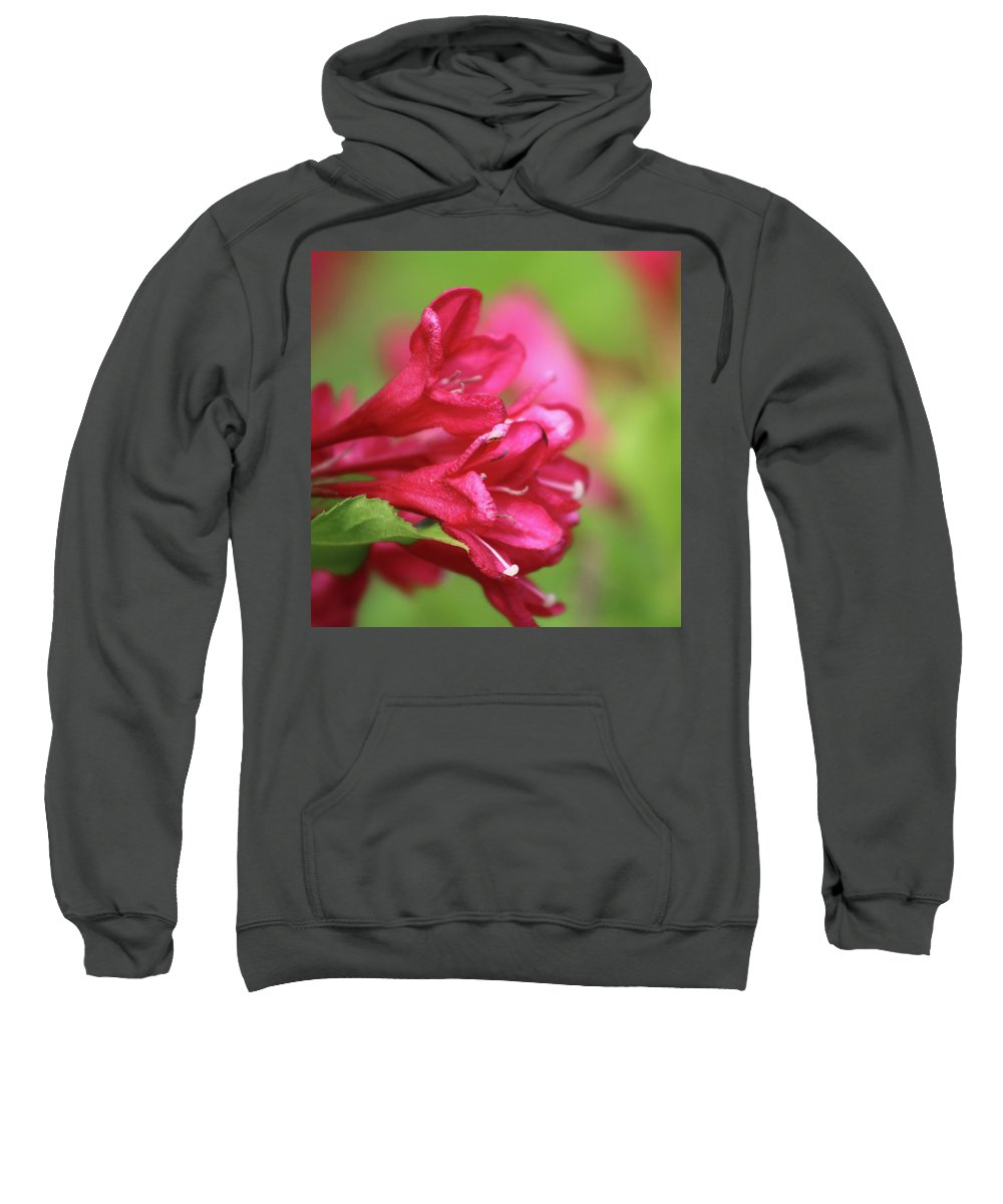 Flower Sweatshirt featuring the photograph Crimson by Walter Stankiewicz