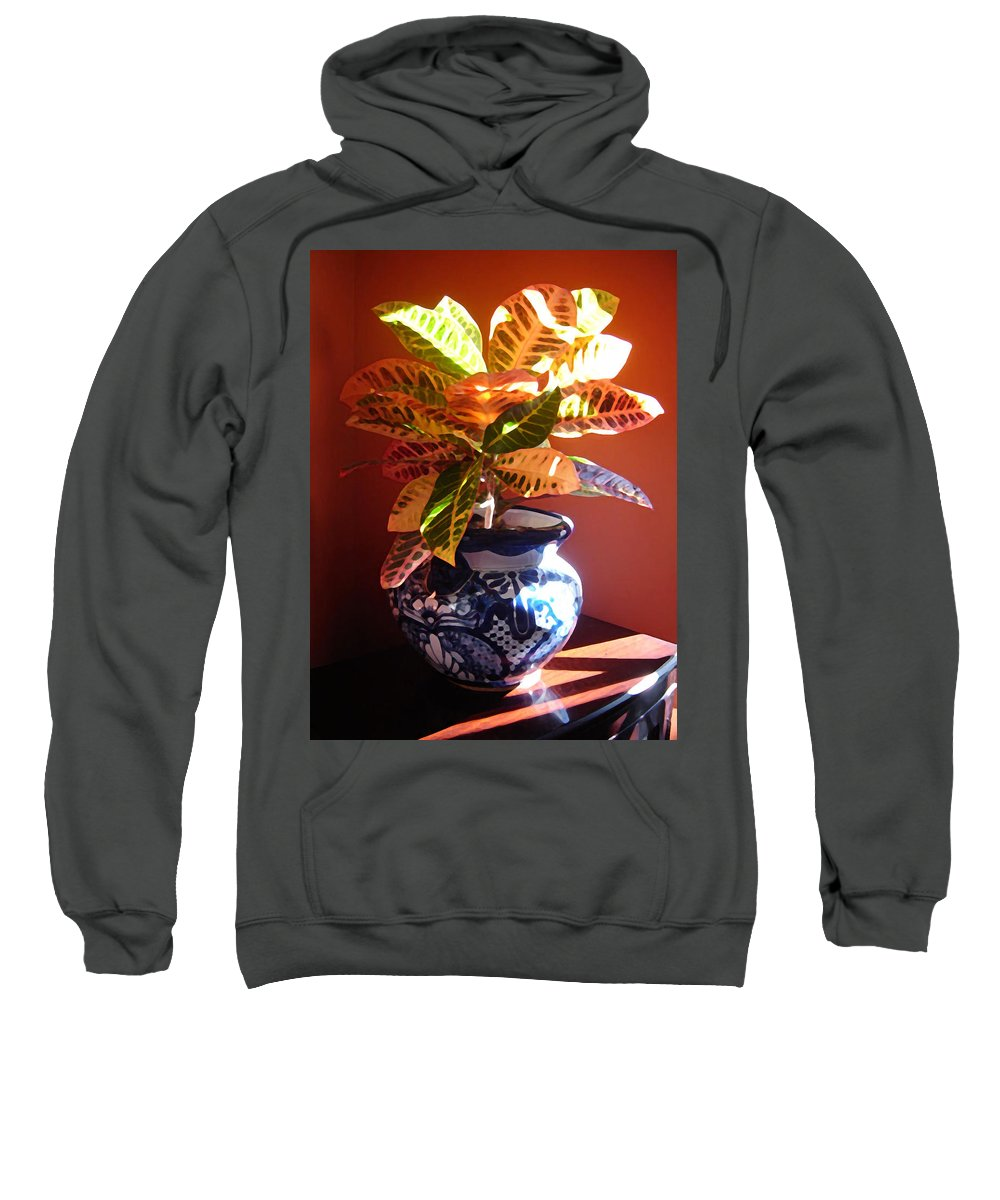 Potted Plant Sweatshirt featuring the photograph Croton In Talavera Pot by Amy Vangsgard