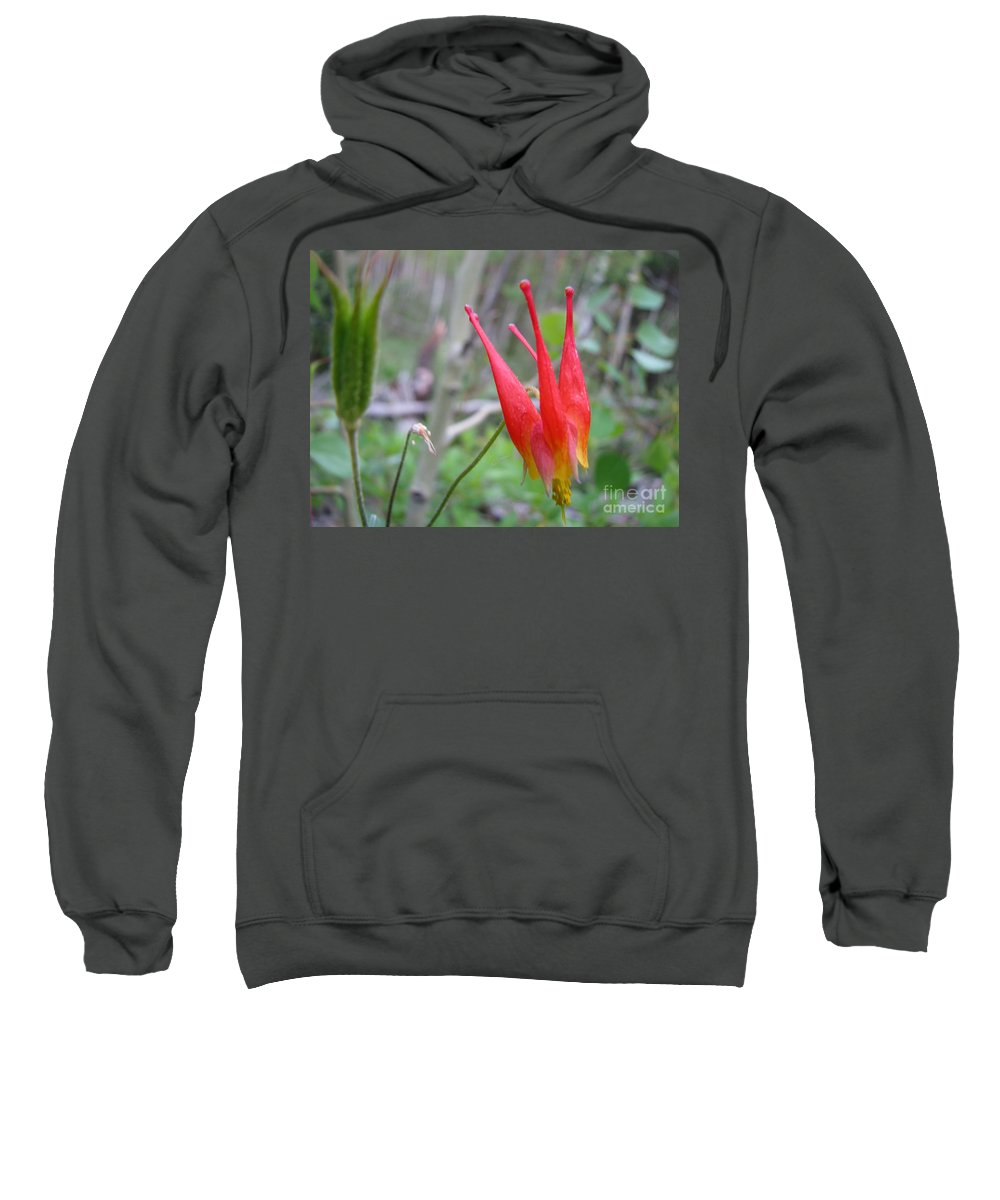 Flowers Of Colorado Sweatshirt featuring the photograph Crown by Amanda Barcon