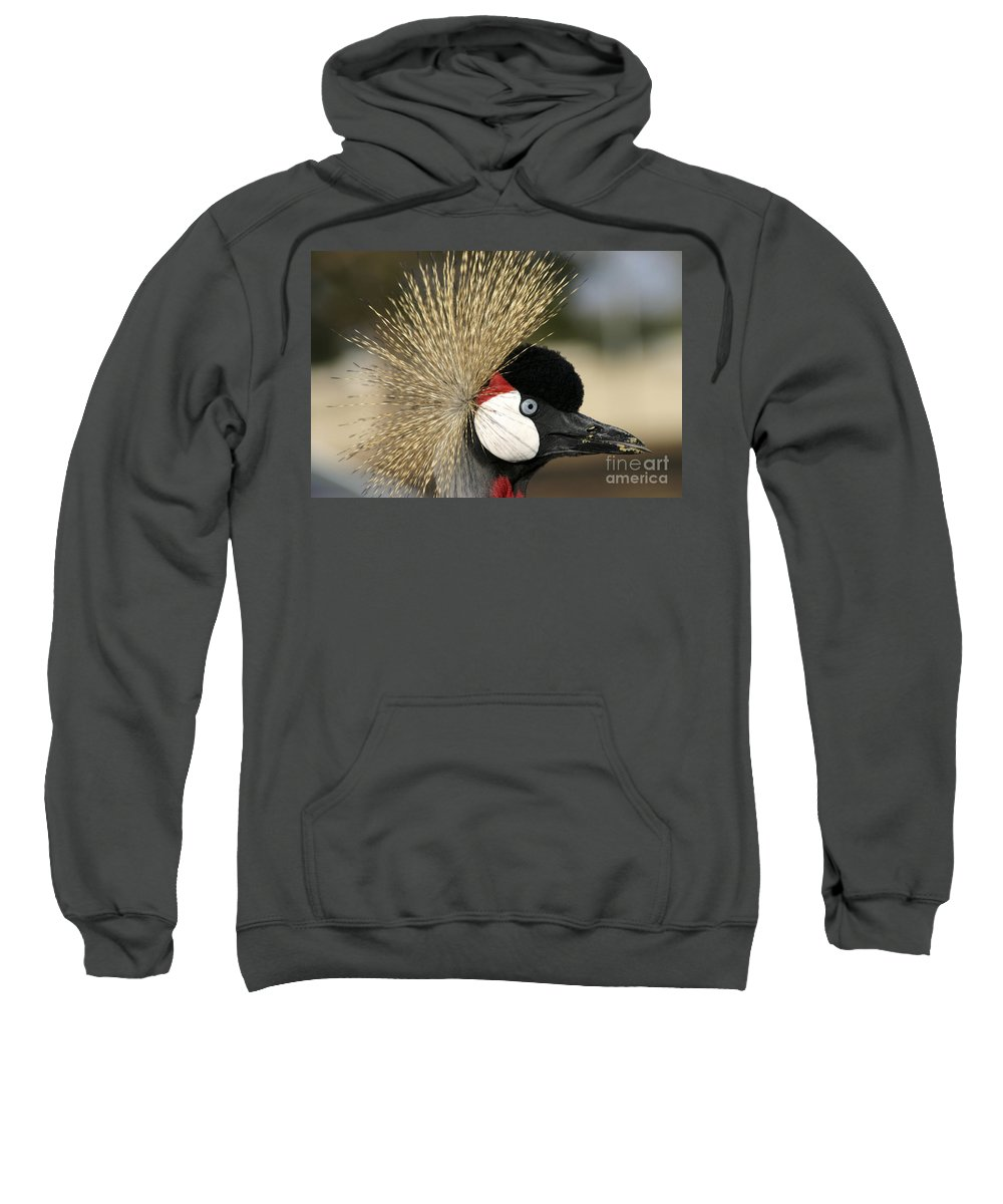 Crowned Sweatshirt featuring the photograph Crown Crane Close Up by Danny Yanai