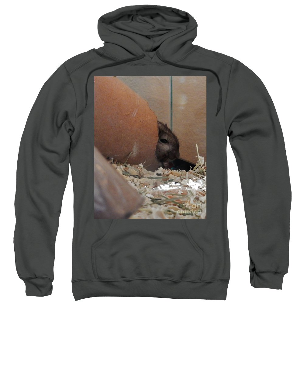 Gerbils Sweatshirt featuring the photograph Crumpet Senses The Arrival Of Day by CL Redding
