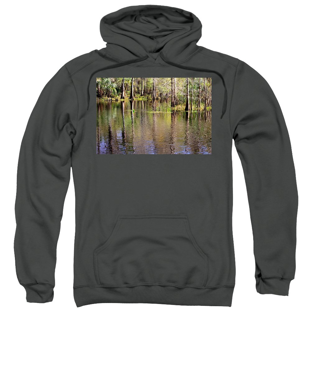 Cypress Trees Sweatshirt featuring the photograph Cypress Trees Along The Hillsborough River by Carol Groenen