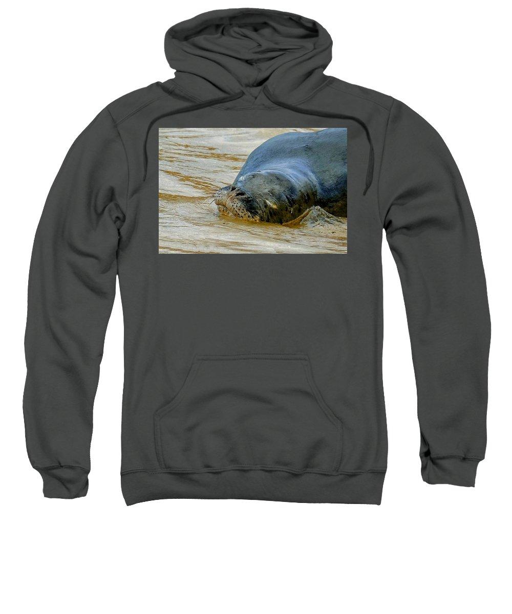 Hawaiian Monk Seals Sweatshirt featuring the photograph Da Benny Sleeps by Melody Bentz