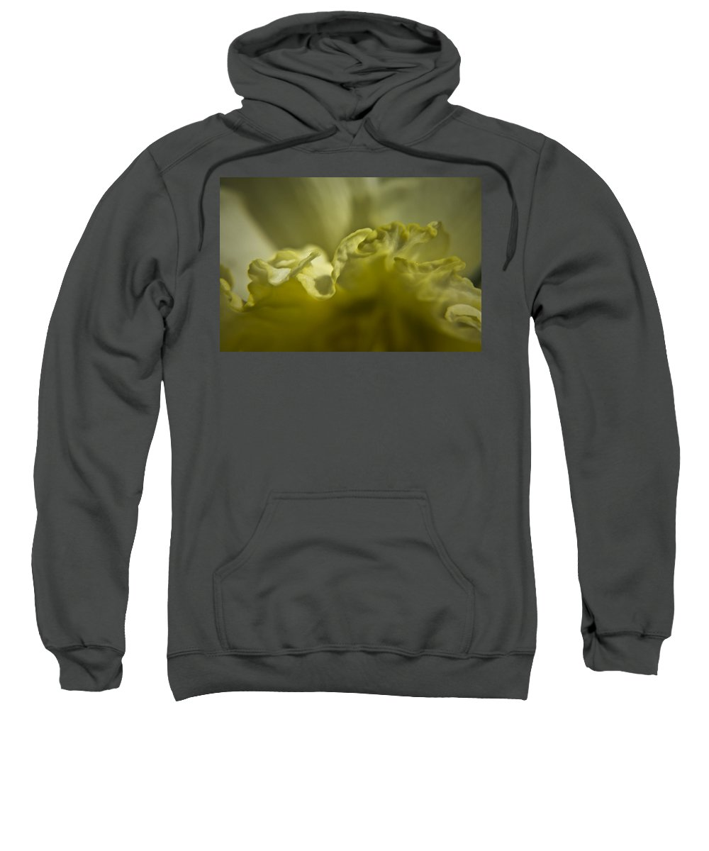 Flower Sweatshirt featuring the photograph Daffodil Ruffles by Teresa Mucha
