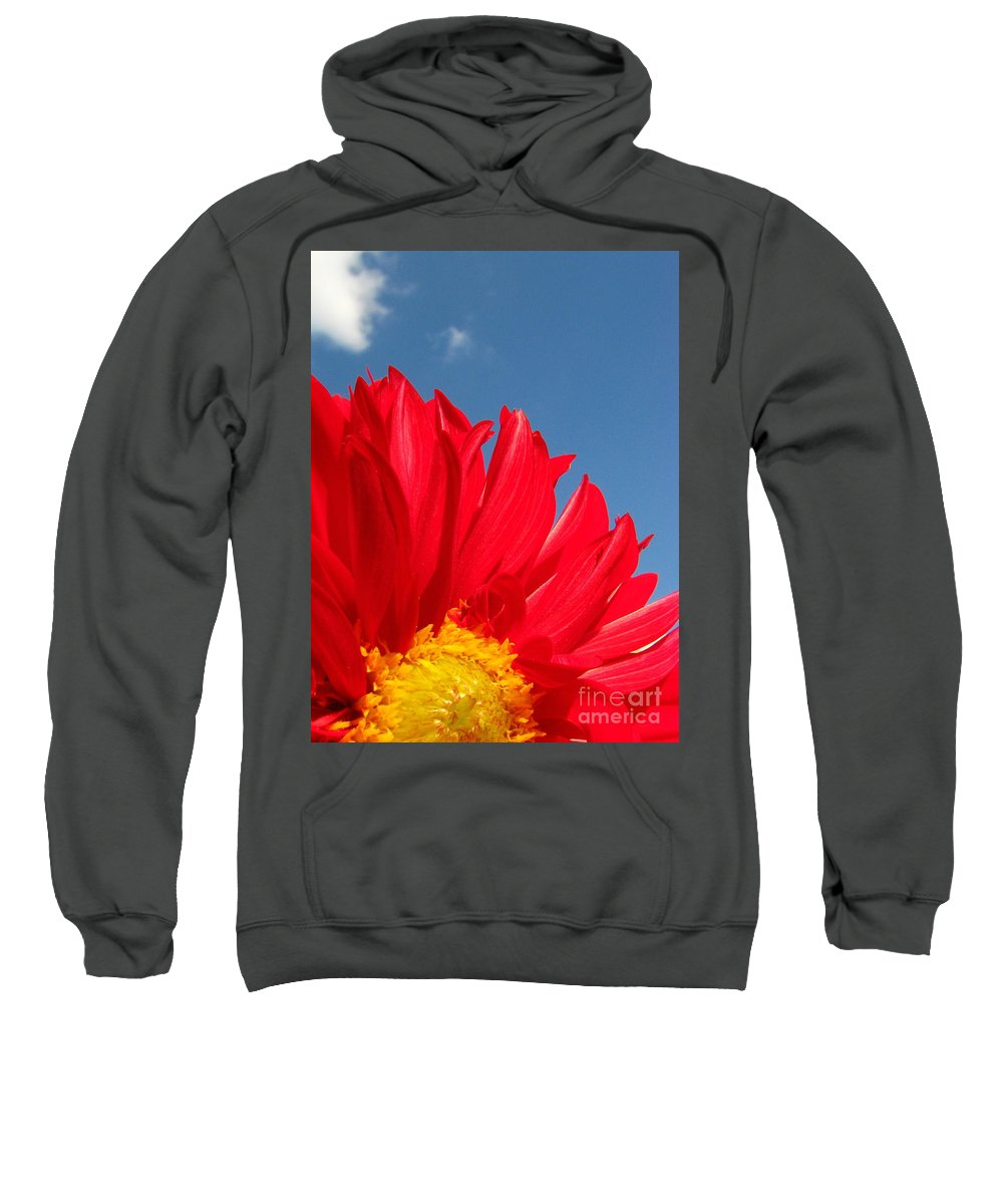 Dahlia Sweatshirt featuring the photograph Dahlia by Amanda Barcon