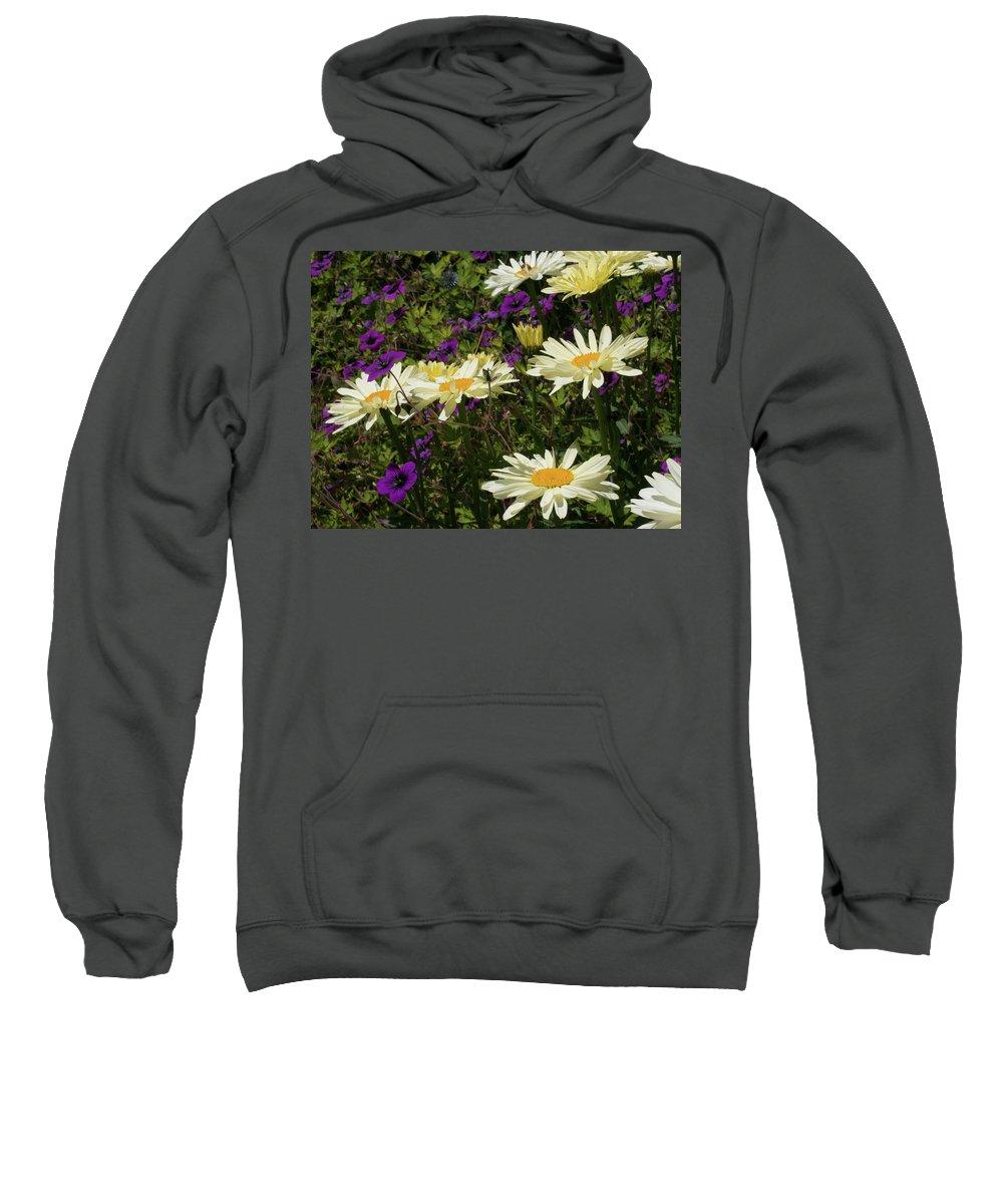 Flower Sweatshirt featuring the photograph Daisies by Kathy Benham