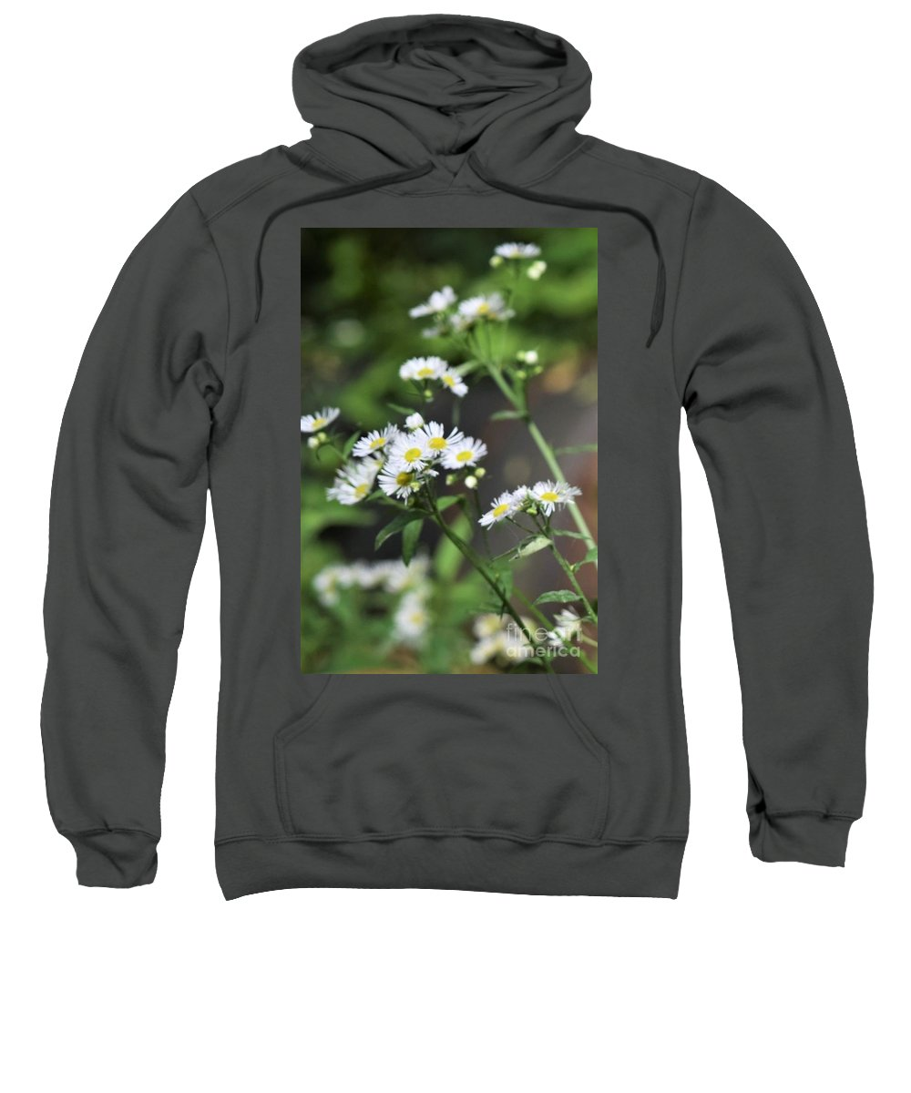 Daisies Sweatshirt featuring the photograph Daisies by Mary Ann Artz