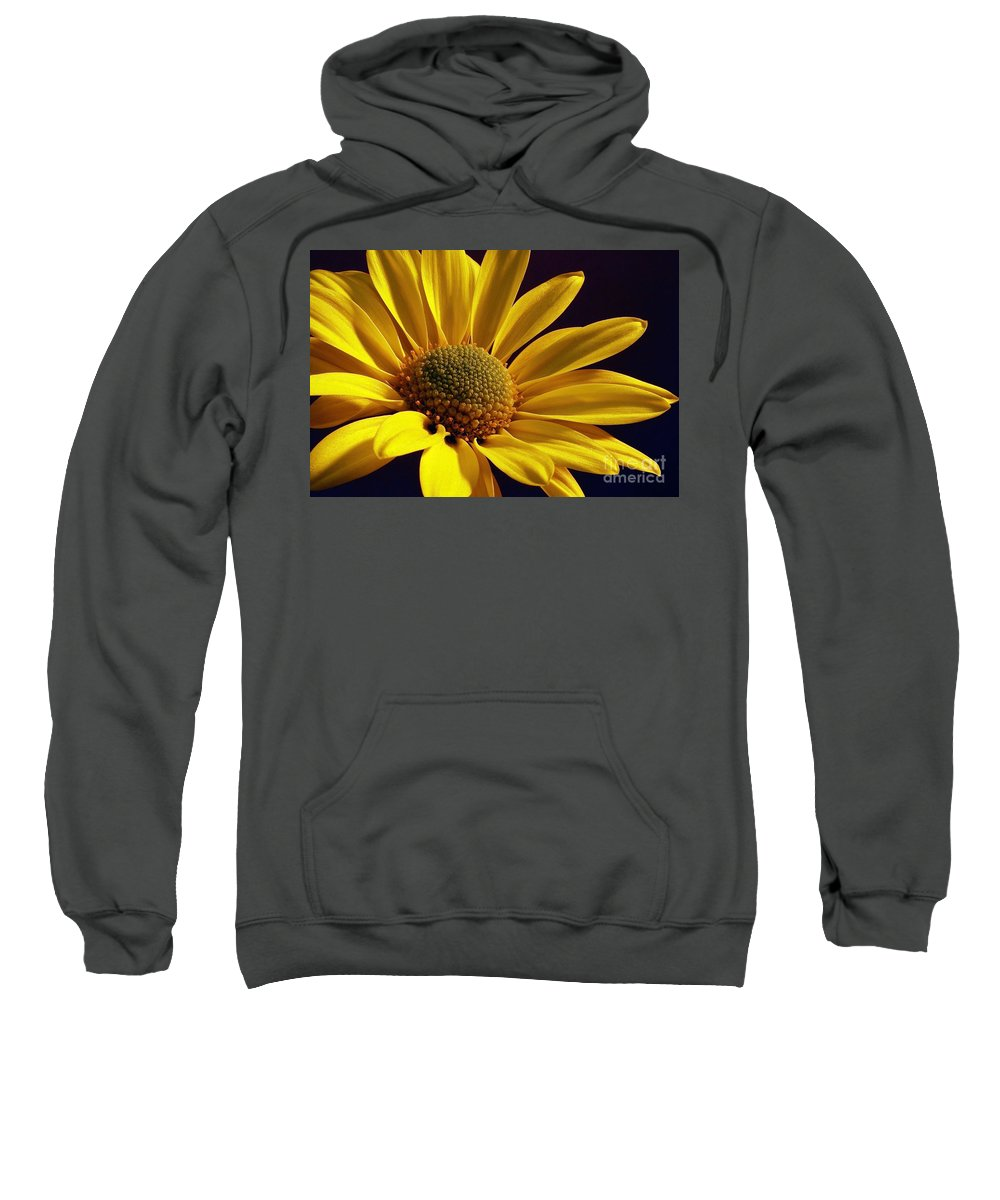 Flower Sweatshirt featuring the photograph Daisy by Lois Bryan