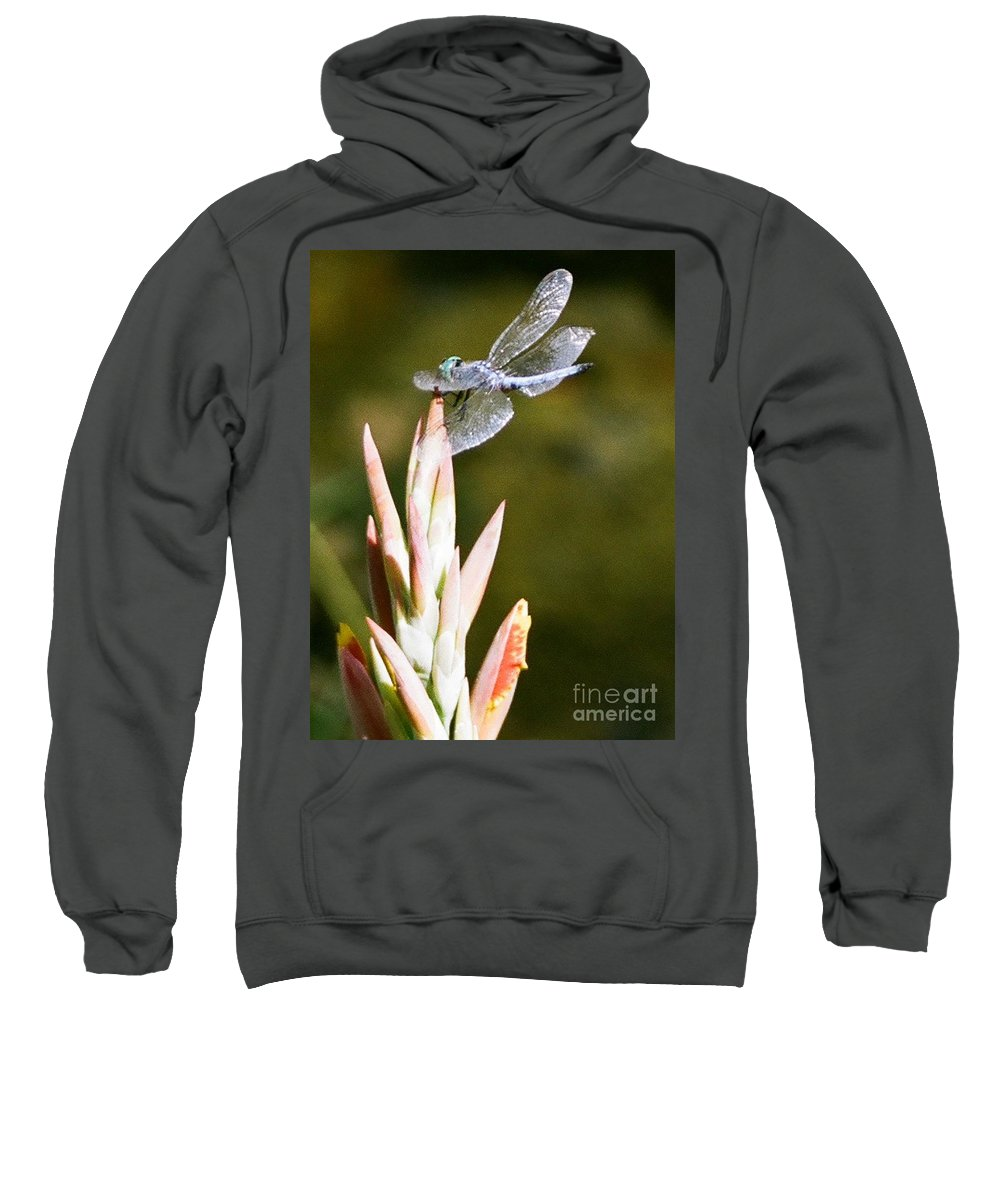 Dragonfly Sweatshirt featuring the photograph Damselfly by Dean Triolo