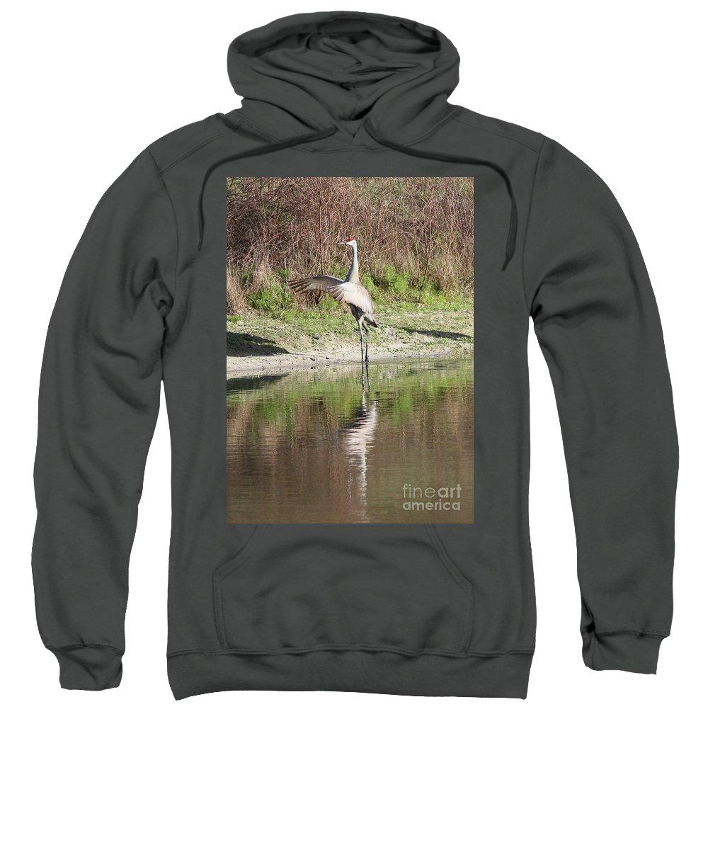 Bird Sweatshirt featuring the photograph Dancing On The Pond by Carol Groenen