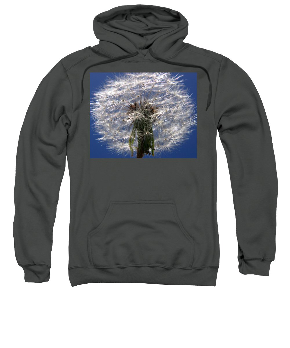 Dandelion Sweatshirt featuring the photograph Dandelion by Ralph A Ledergerber-Photography