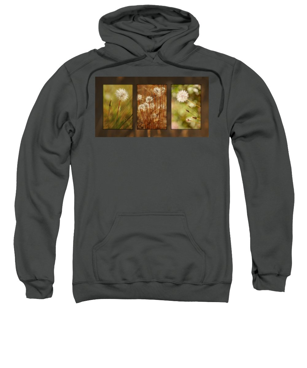 Dandelions Sweatshirt featuring the photograph Dandelion Series by Jill Reger