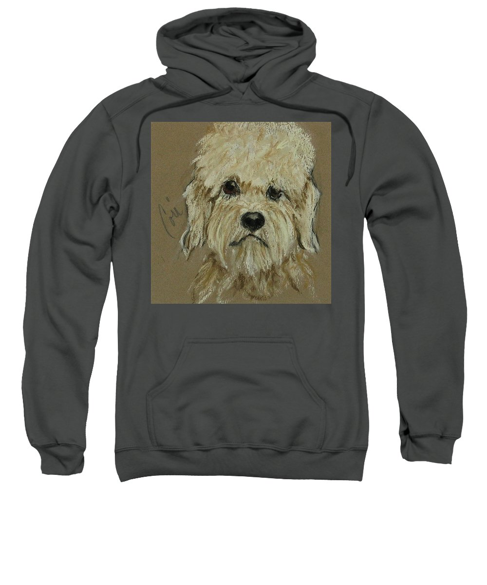 Dandie Dinmont Terrier Sweatshirt featuring the drawing Dandie by Cori Solomon