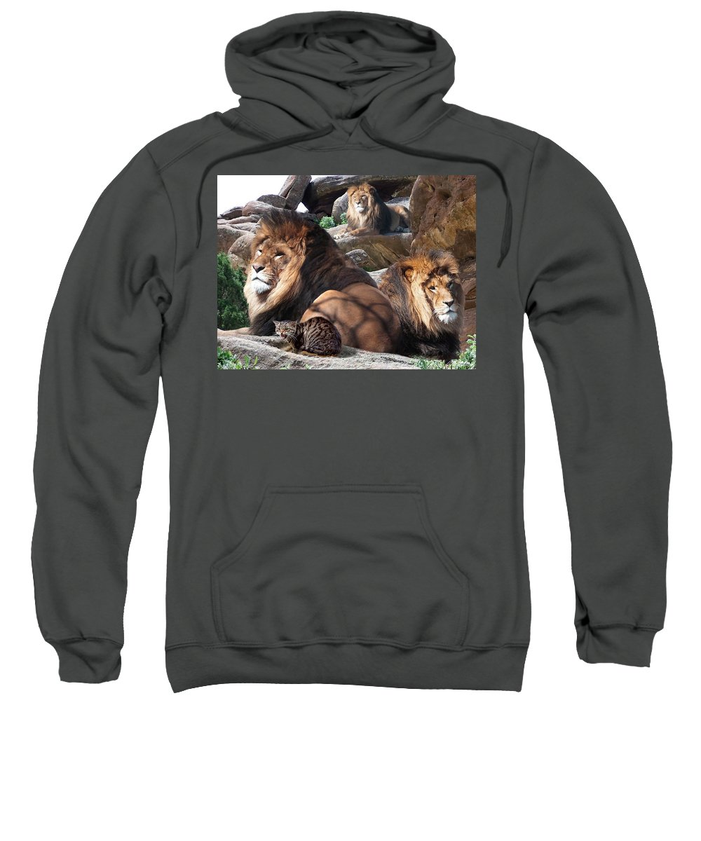 Lions Sweatshirt featuring the mixed media Daniel In The Lion by Bill Stephens
