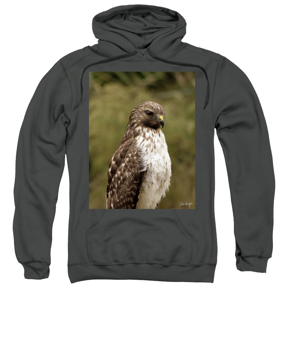 Bird Sweatshirt featuring the photograph Dark Beauty by Phill Doherty