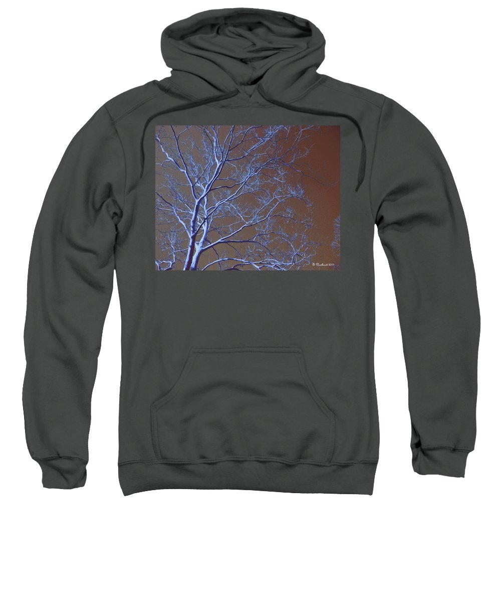Tree Sweatshirt featuring the photograph Dark Woods by Betty Northcutt
