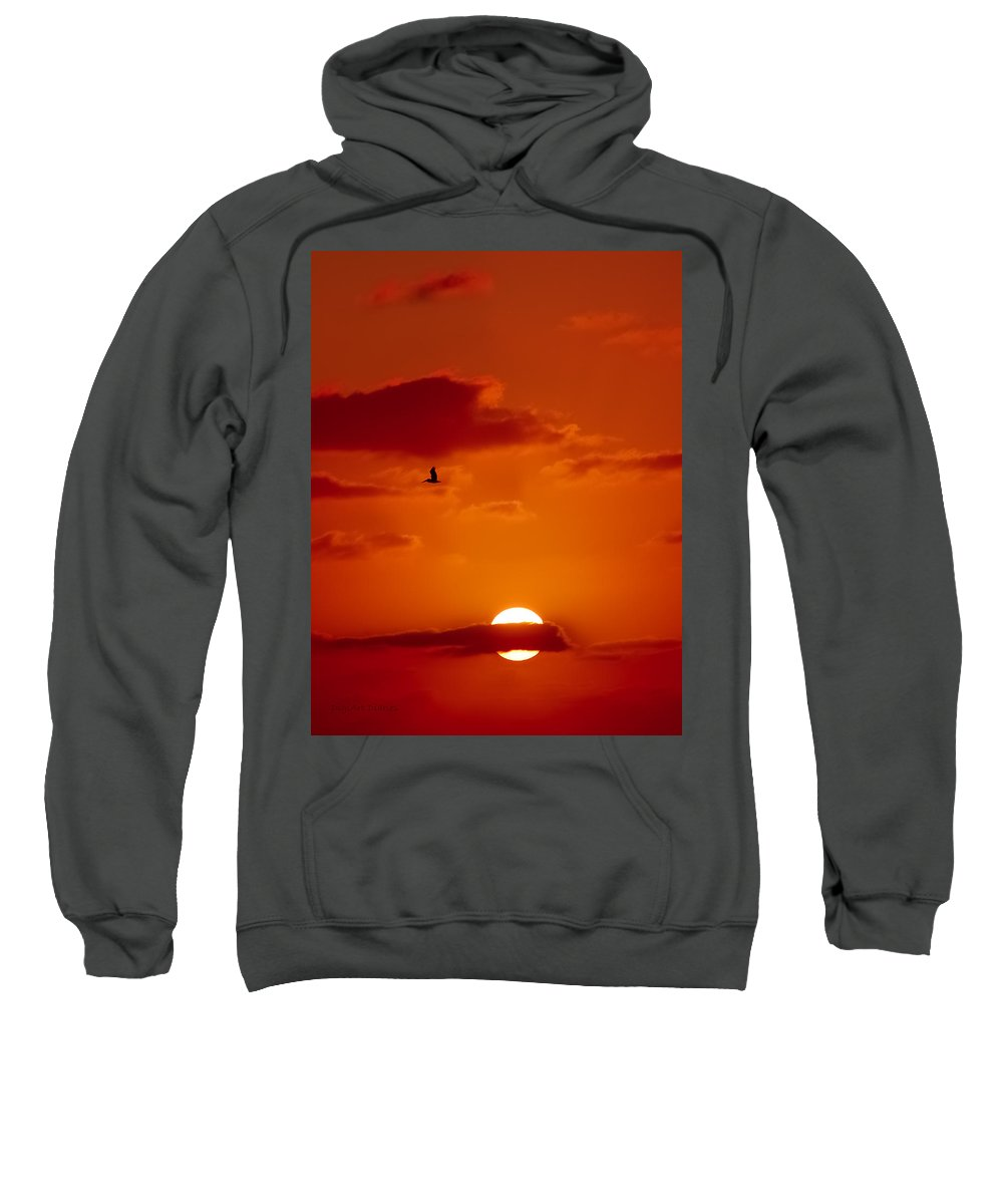 Pelican Sweatshirt featuring the digital art Dawn Flight by DigiArt Diaries by Vicky B Fuller