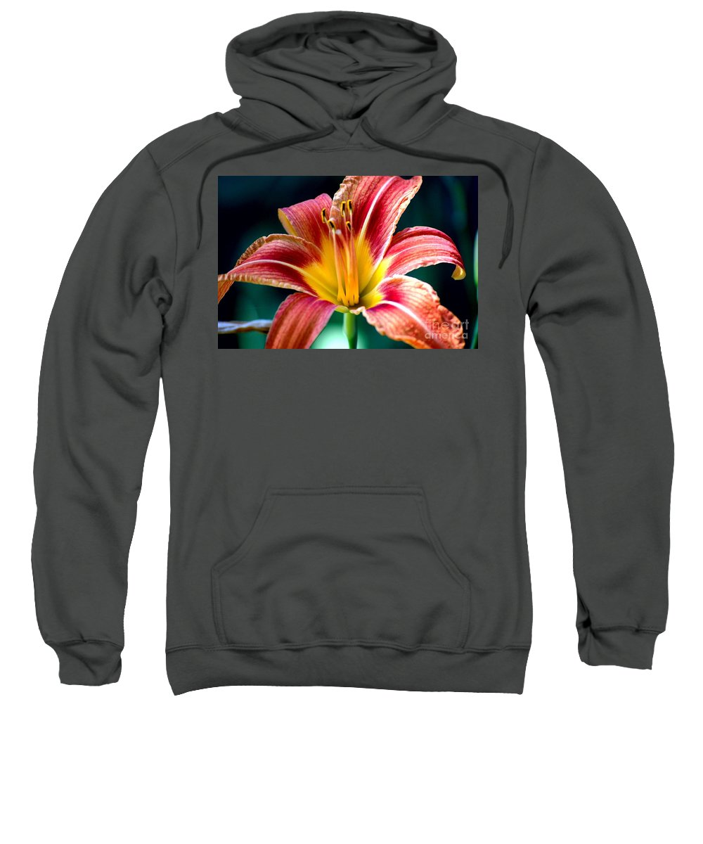 Landscape Sweatshirt featuring the photograph Day Lilly by David Lane