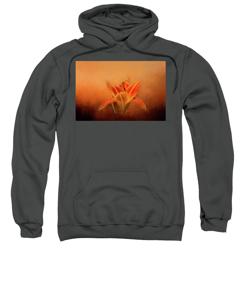 Photography Sweatshirt featuring the digital art Day Lily Emerging by Terry Davis