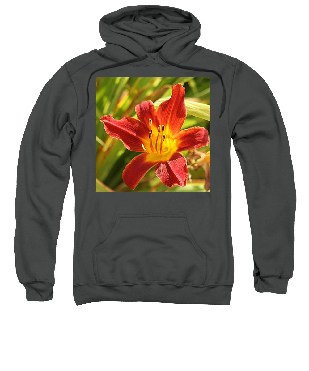 Flower Sweatshirt featuring the photograph Daylily by Jean Macaluso