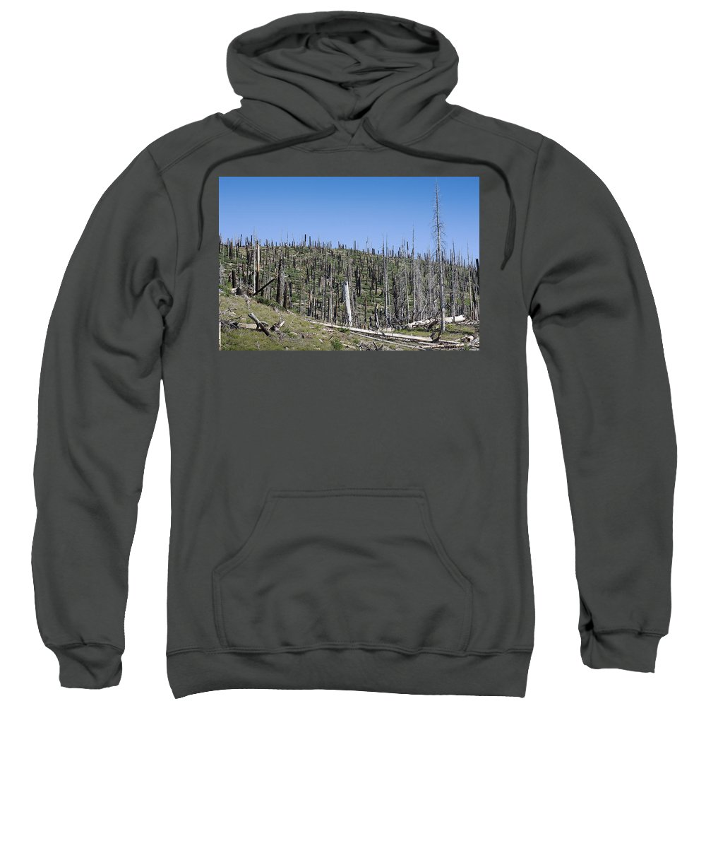 Burned Trees Sweatshirt featuring the photograph Dead Wood by Kelley King