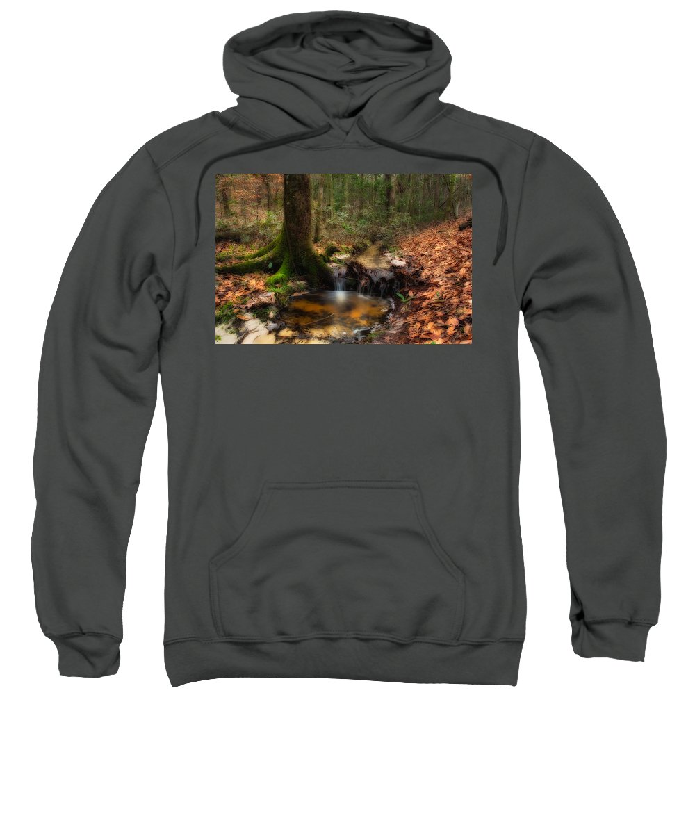 Forest Sweatshirt featuring the photograph Deep Forest Creek by Rich Leighton