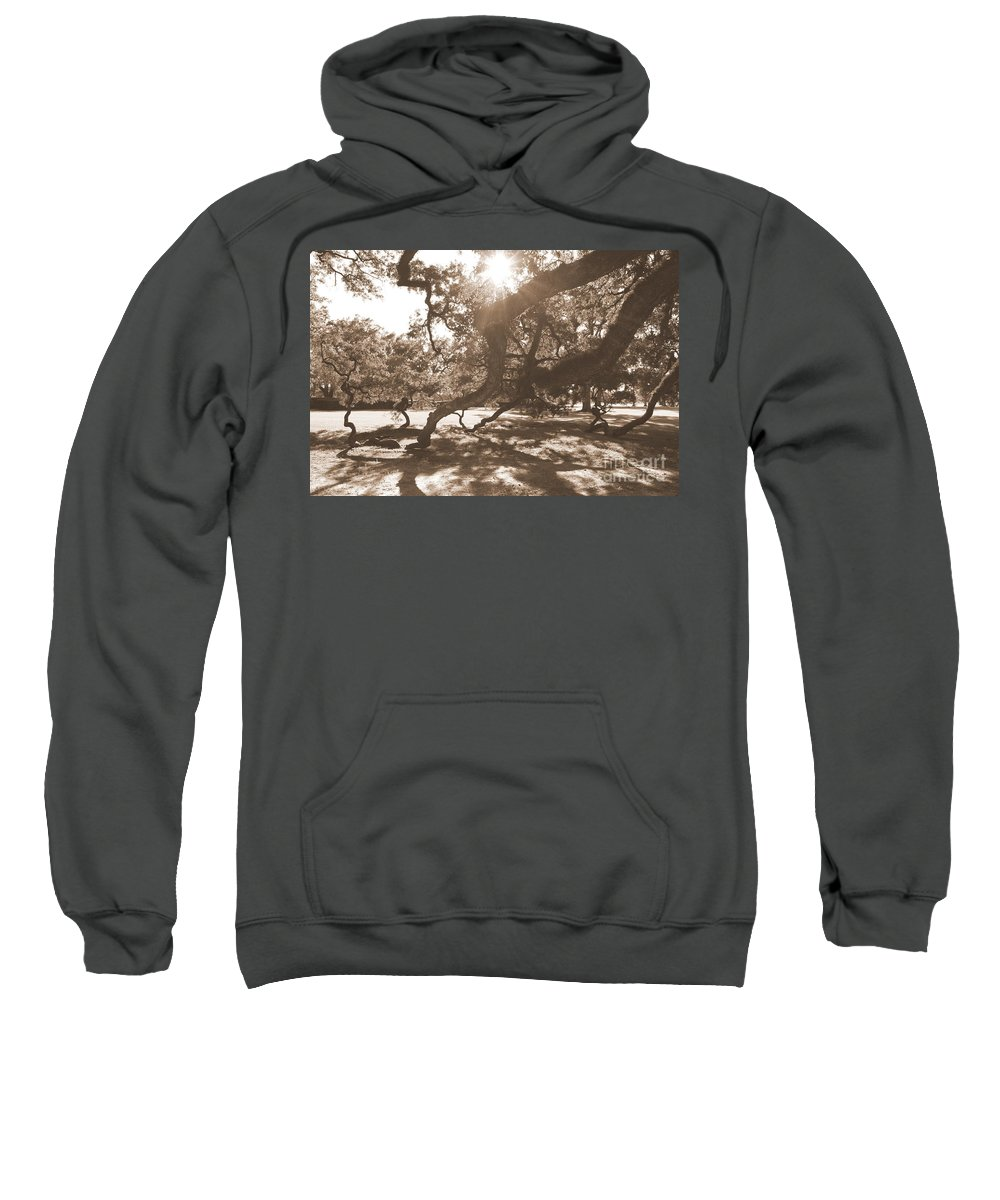 Sepia Sweatshirt featuring the photograph Defying Gravity In Sepia by Carol Groenen
