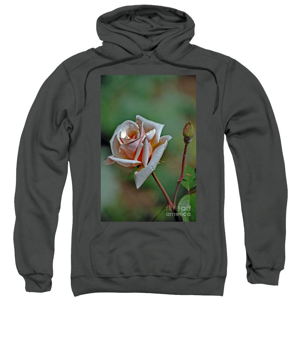 Pictures Of Flowers Sweatshirt featuring the photograph Delicate In Pink by Skip Willits