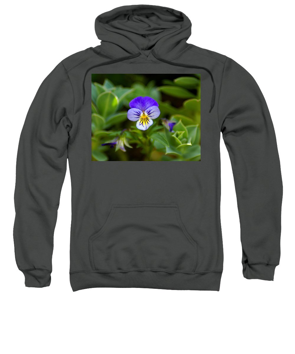 Flowers Sweatshirt featuring the photograph Delightful Colors by Ben Upham III