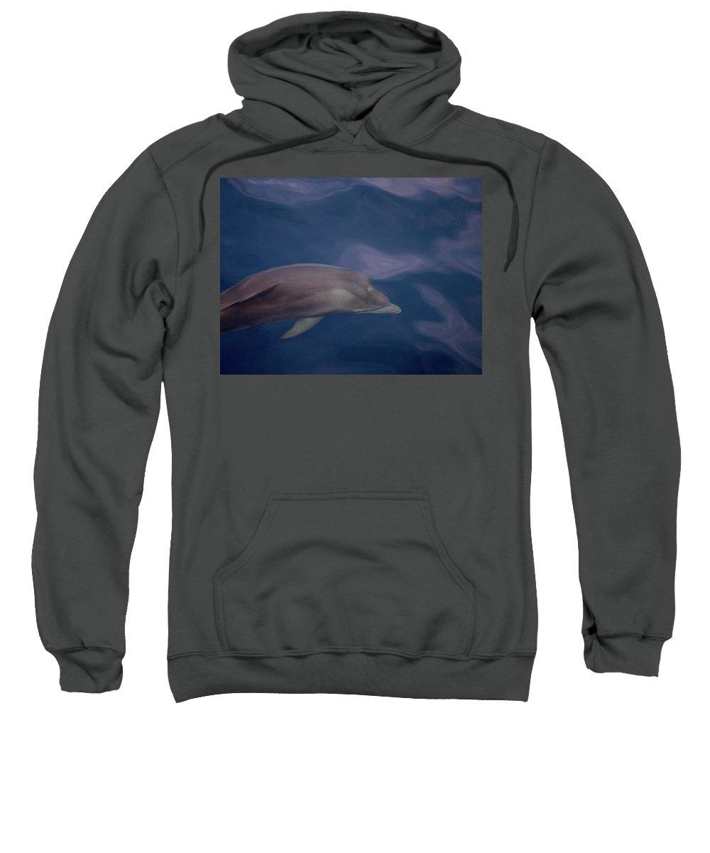 Valasretki Sweatshirt featuring the photograph Delphin 9 by Jouko Lehto
