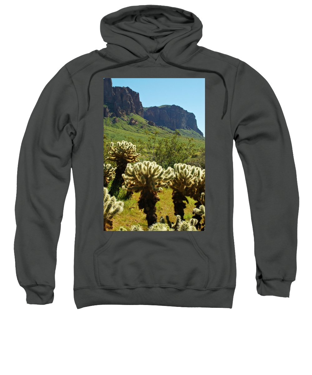 Arizona Sweatshirt featuring the photograph Desert Cholla 2 by Jill Reger
