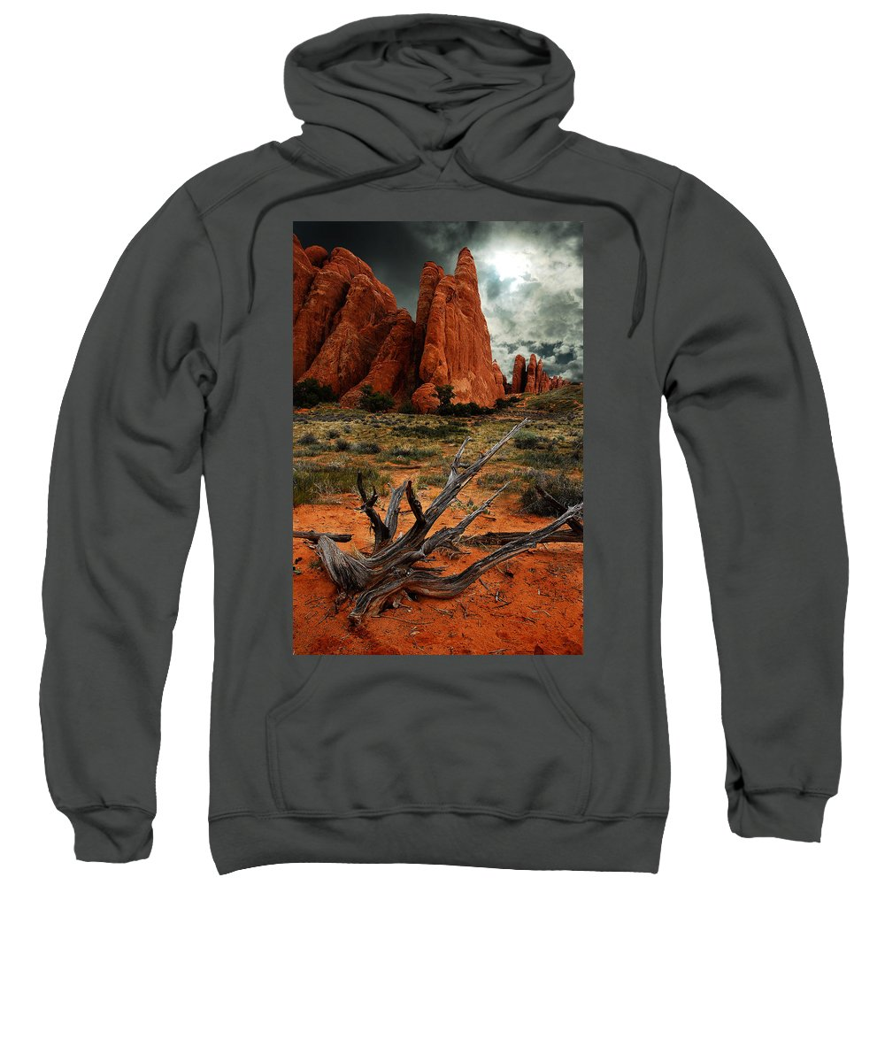 Arches National Park Sweatshirt featuring the photograph Desert Floor by Harry Spitz